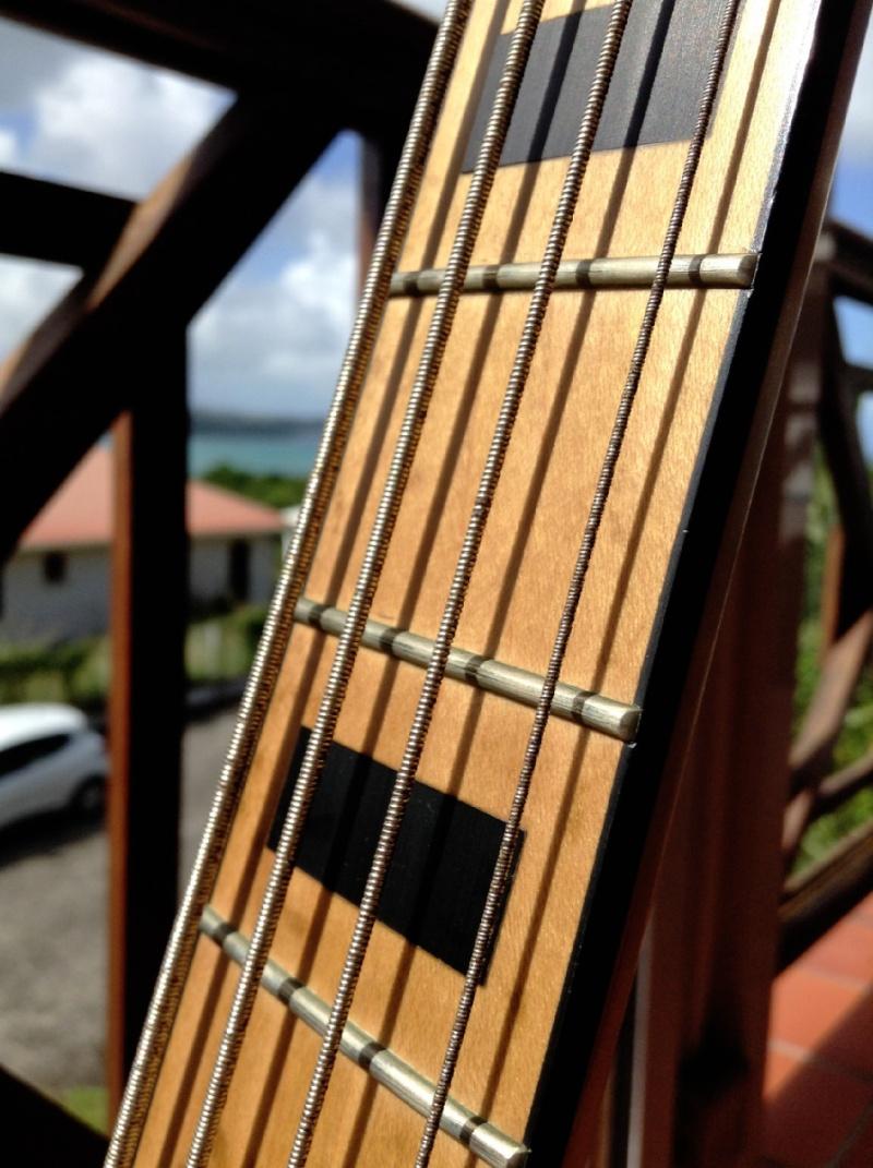 Des bassistes et des cordes ? Img_1214